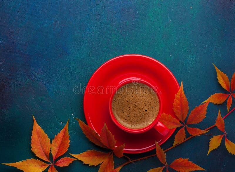 杯五颜六色的秋叶弗吉尼亚爬行物-蓝色无奶咖啡和分支在黑暗的-绿色木桌 平的位置 免版税库存照片