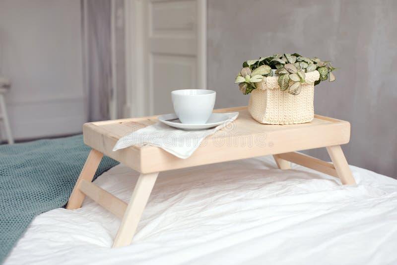 杯和盆栽植物床盘子的 库存照片