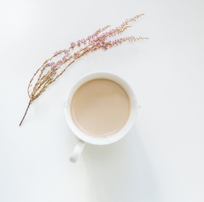杯咖啡拿铁花被隔绝的简单派白色 库存照片