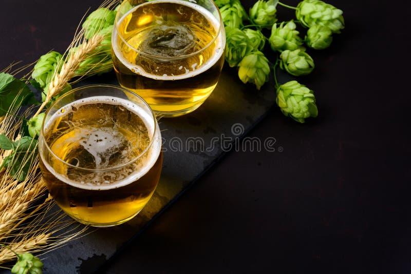 杯啤酒用绿色蛇麻草和麦子耳朵在黑暗的木背景 仍然1寿命 复制空间 图库摄影