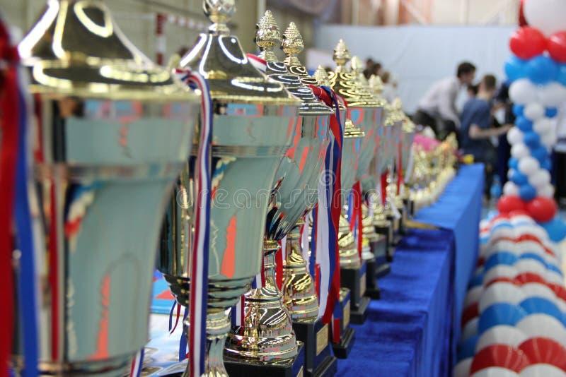 杯在授予跆拳道的优胜者的桌上 库存图片