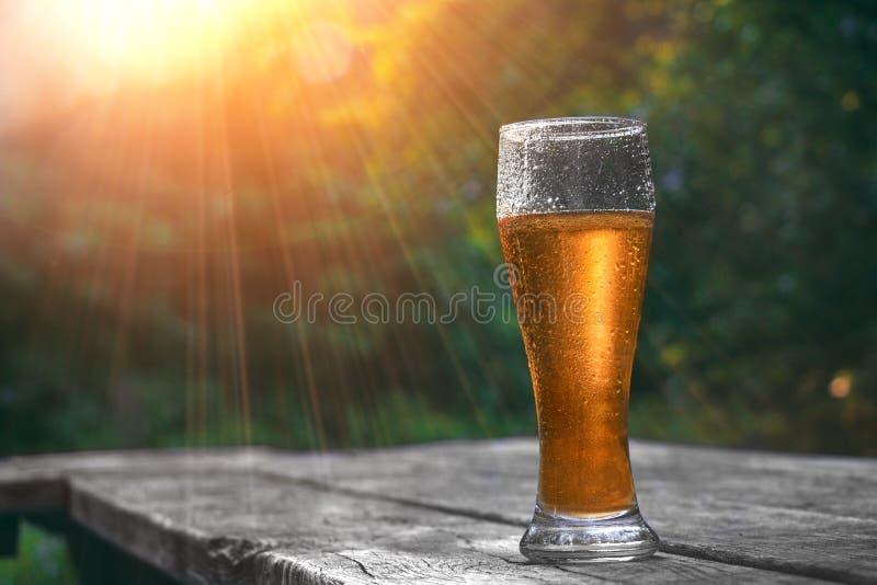 杯在木桌上的冰镇啤酒在太阳发出光线在自然背景 在日落的静物画 假期和夏天心情 库存图片
