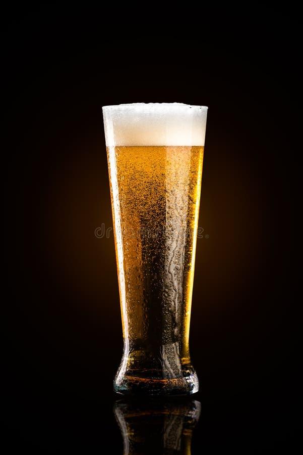 杯在黑背景的啤酒 免版税库存照片
