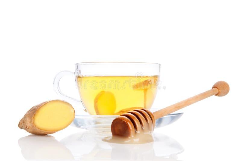 杯姜茶用蜂蜜。 库存图片