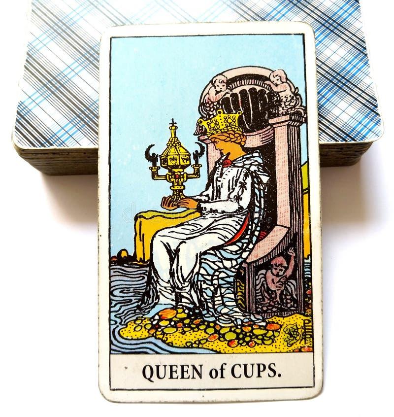 杯子占卜用的纸牌的女王/王后 库存图片