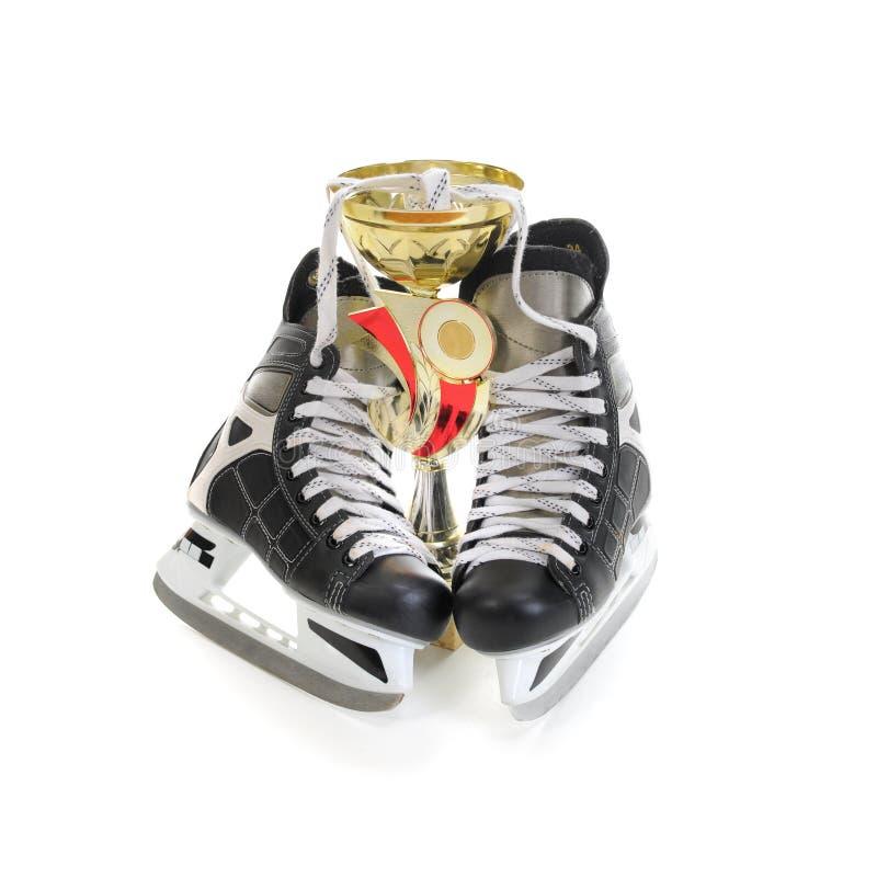 Download 杯子曲棍球冰鞋赢利地区 库存图片. 图片 包括有 目标, 防护, 专业人员, 球员, 冠军, 弯脚的, 投反对票 - 22358217
