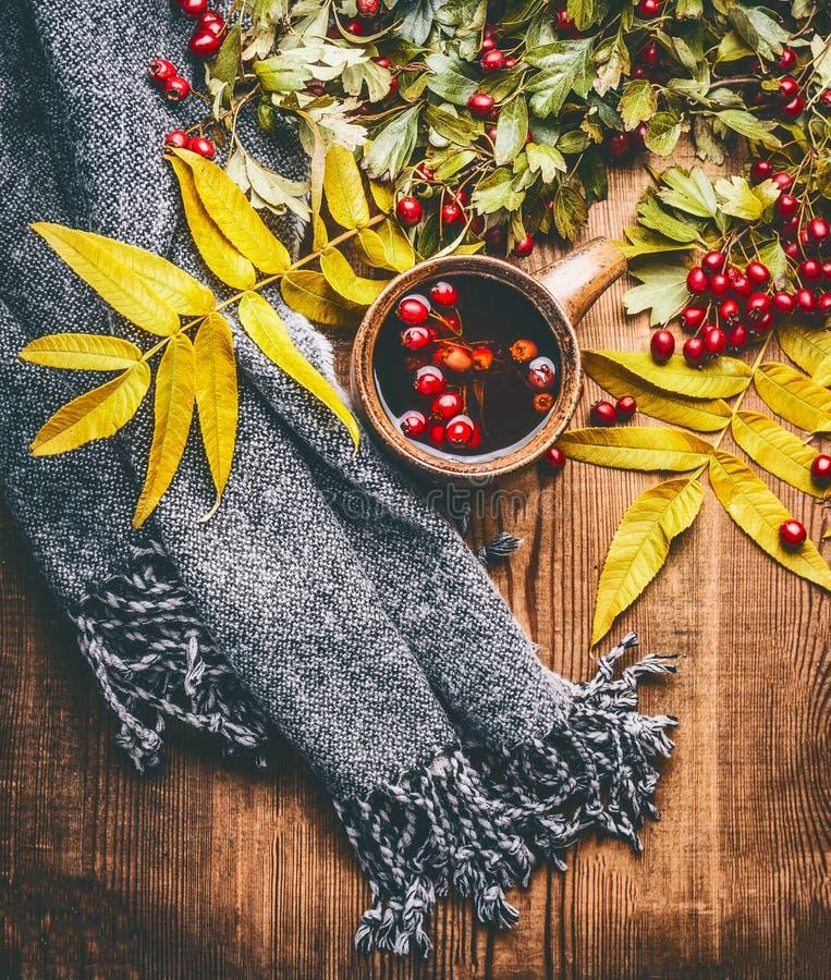 杯子清凉茶用红色秋天山楂树莓果、秋天叶子和围巾在土气木背景 免版税图库摄影