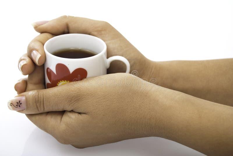 杯子现有量拿着红色茶 库存图片