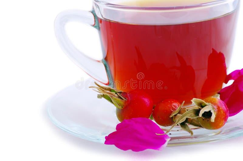 Download 杯子玻璃清凉茶 库存照片. 图片 包括有 咖啡馆, 餐馆, 制动手, 叶子, 打赌的人, 草本, 茶碟, 投反对票 - 15679474