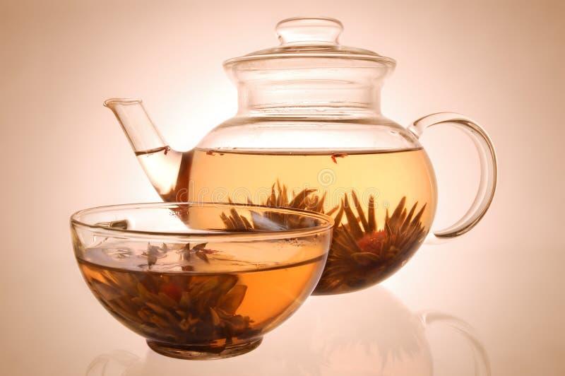 杯子玻璃茶壶 免版税库存照片