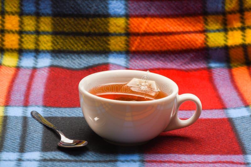 杯子用热水填装了并且浸洗了袋子茶 茶酿造概念 杯子用开水、茶袋和匙子填装了  库存照片