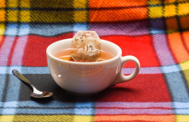 杯子用热水填装了并且浸洗了袋子茶 酿造在陶瓷杯子的茶的过程 杯子充满开水 库存照片