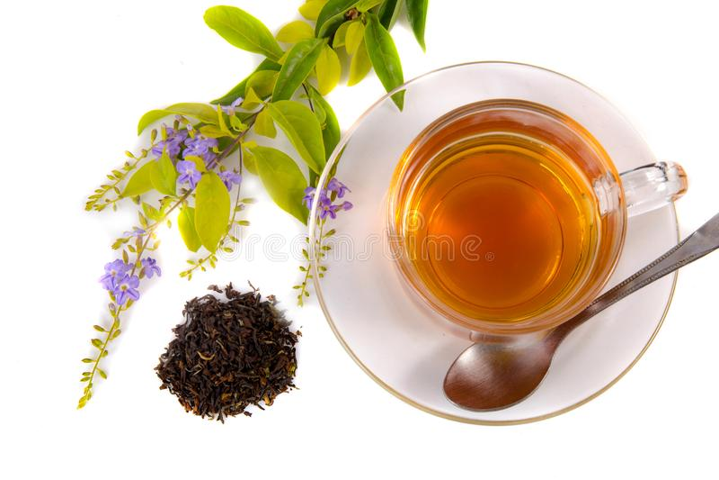 杯子绿色叶子茶 免版税库存图片