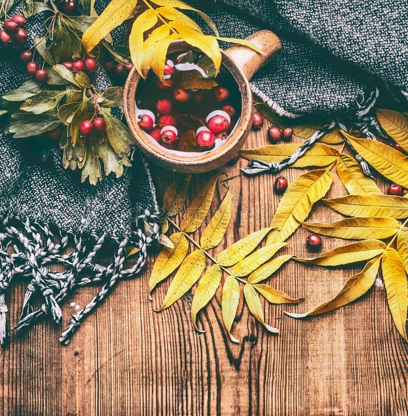 杯子茶用红色秋天莓果、秋天叶子和围巾在土气木背景 免版税图库摄影