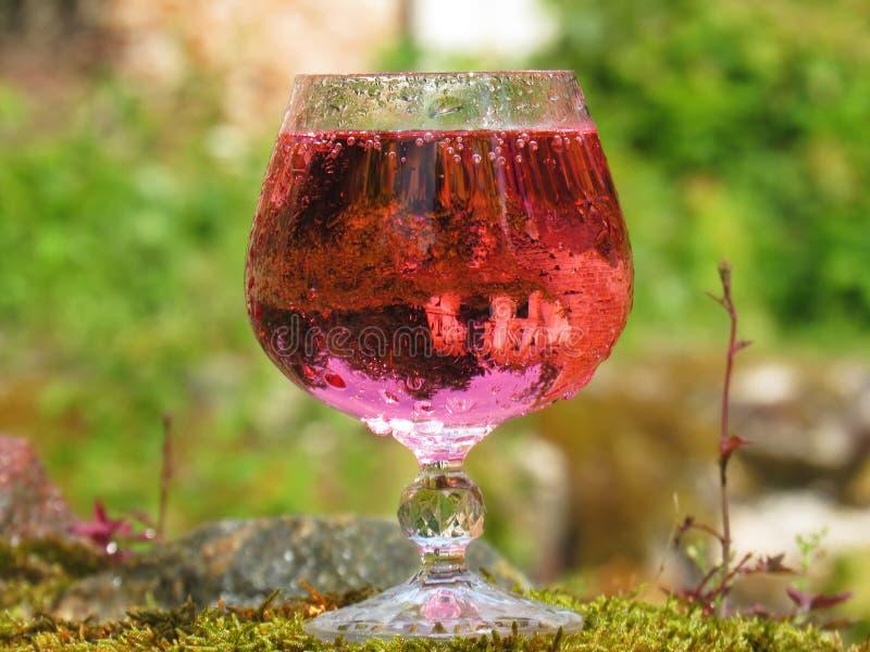 杯桃红色香槟 免版税库存图片