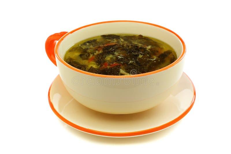 Download 杯汤用新鲜的栗色 库存图片. 图片 包括有 空白, 栗色, 土豆, 叶子, 维生素, 黄色, 没人, 陶瓷 - 30326765