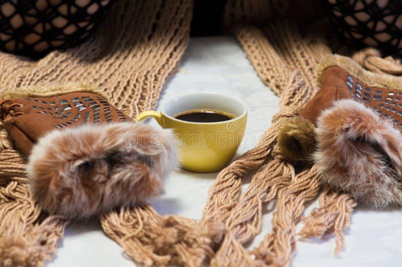 杯热的咖啡在天冬天寒冷 温暖的围巾和手套 免版税库存照片