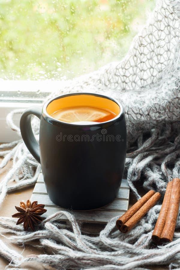杯热的茶用在窗台羊毛格子花呢披肩的柠檬 r 下雨外面 r 免版税库存图片