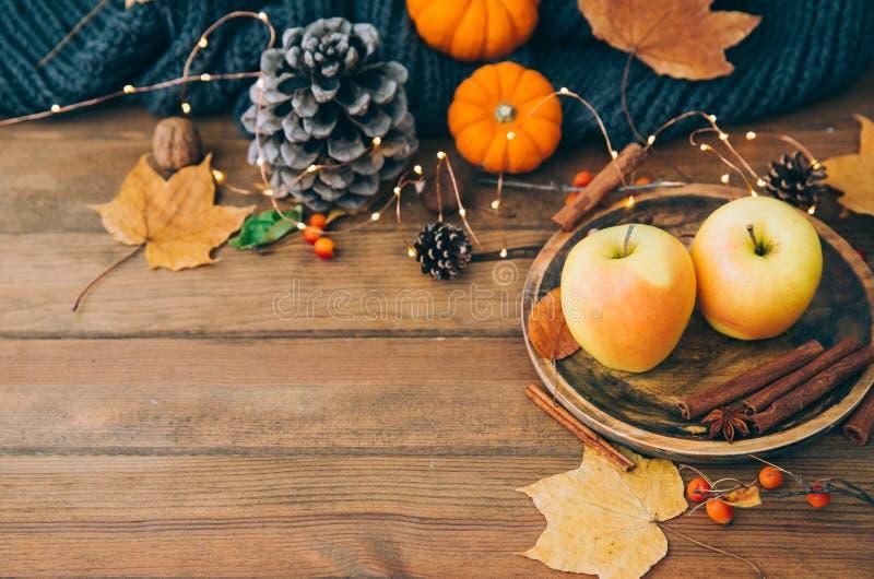 杯热的辣茶用茴香和桂香在木背景 免版税库存图片