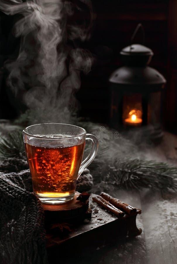 杯煮沸在冬天装饰的红茶 图库摄影