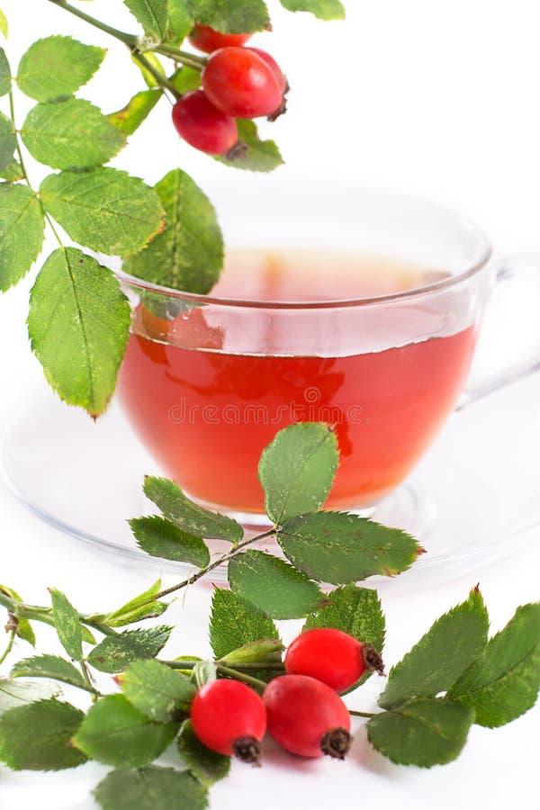 杯玫瑰果茶和莓果 免版税图库摄影