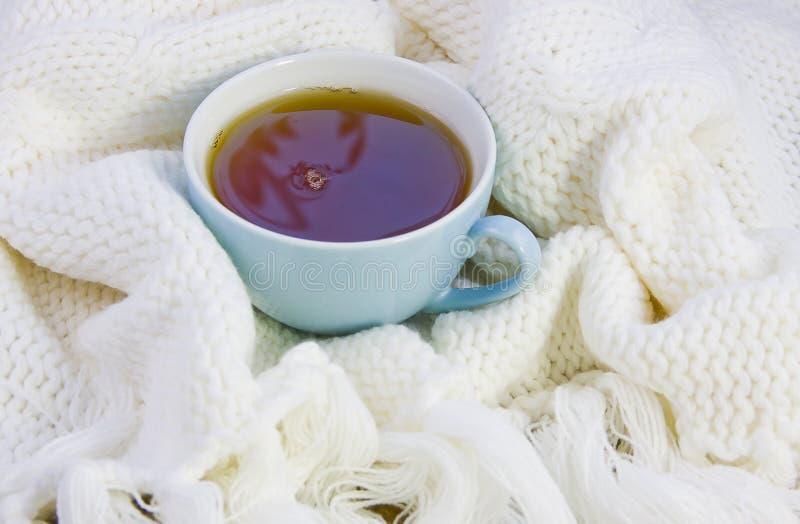 杯用茶 免版税库存图片
