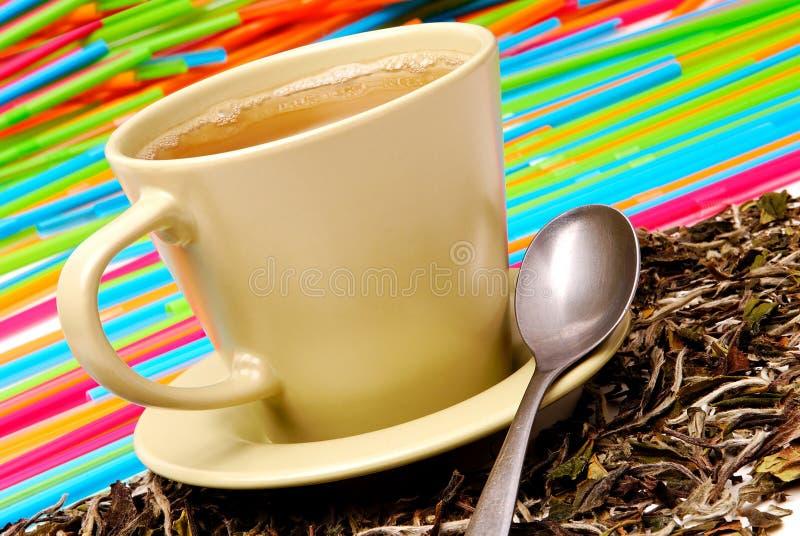 杯绿茶 库存照片