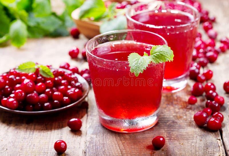 杯蔓越橘汁用新鲜的莓果 库存照片