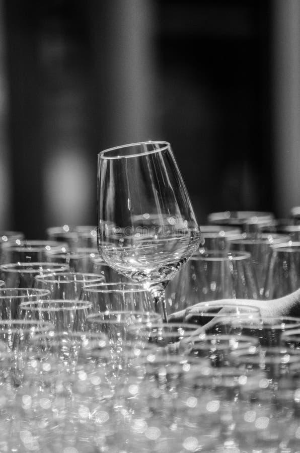 杯酒 免版税库存照片