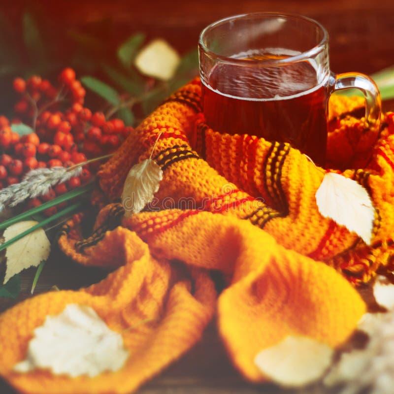 杯顶视图热的茶和柠檬和花生曲奇饼,在木桌背景的秋叶 复制空间 免版税库存图片