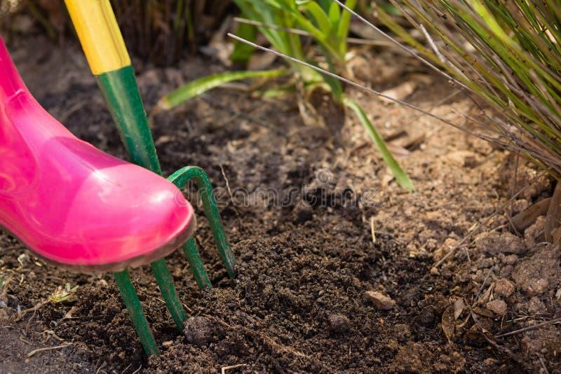 松开与庭院叉子的妇女特写镜头土壤 库存照片