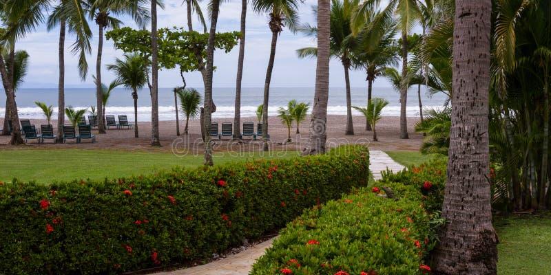松弛热带,海滩 免版税库存图片