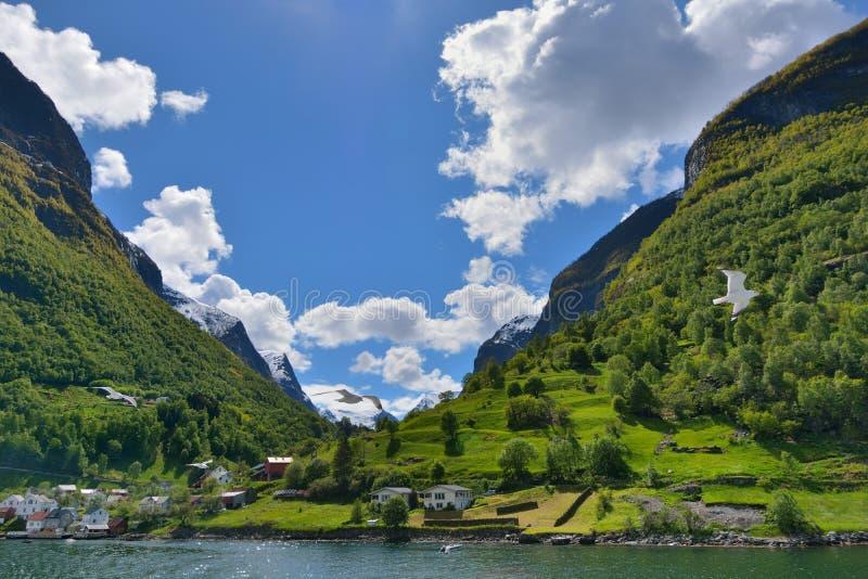 松恩峡湾,挪威 免版税库存照片