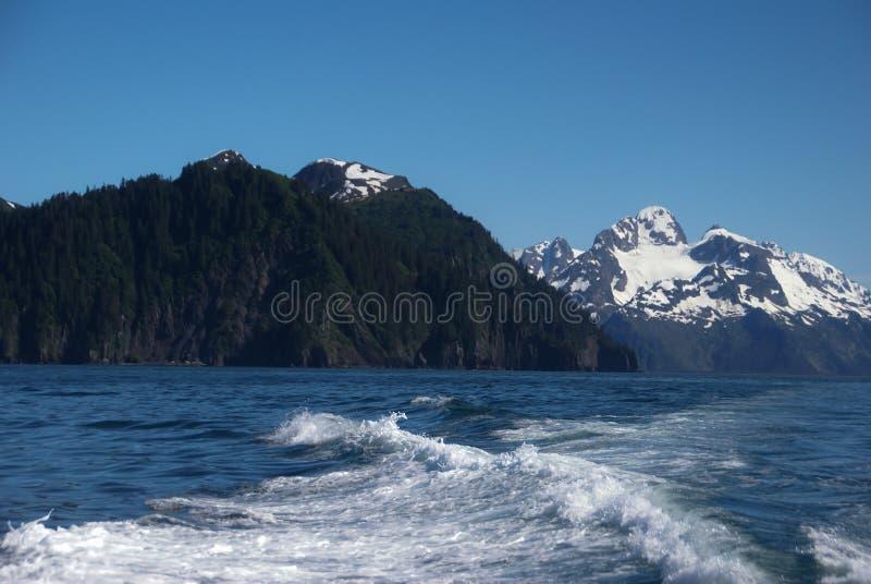 松树在积雪的山旁边的被盖的山在有波浪的海洋旁边在苏厄德阿拉斯加附近的清楚的天空蔚蓝下 免版税库存图片