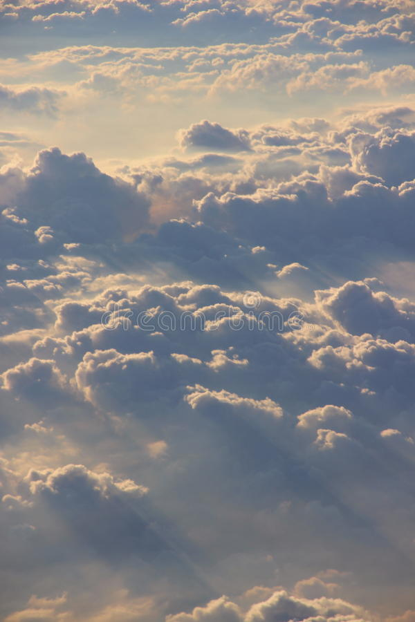 松的被日光照射了云彩鸟瞰图从飞机的 库存图片