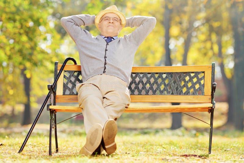 轻松的资深绅士坐一条长凳在公园 库存照片