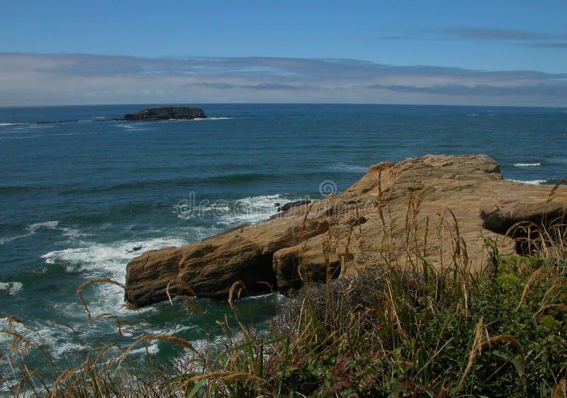 绿松石海在离俄勒冈海岸的附近 免版税库存图片