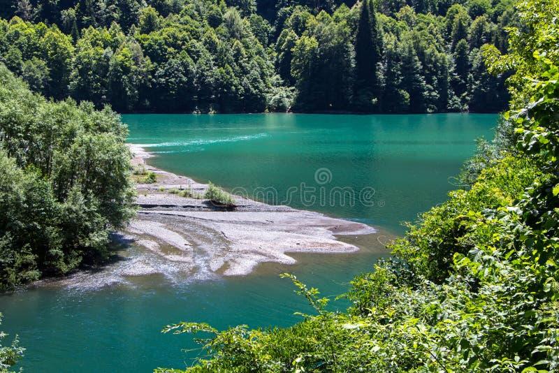 绿松石湖照片在树中的 图库摄影