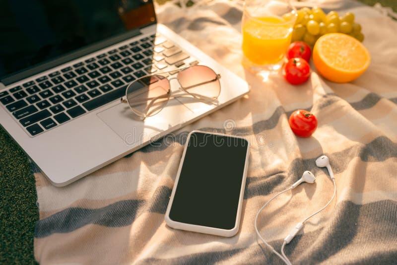 板材平的位置用果子和膝上型计算机有其他工作对象的在绿草 库存照片