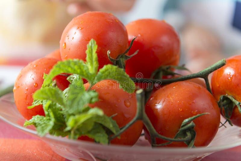 板材用蕃茄和薄荷 免版税图库摄影