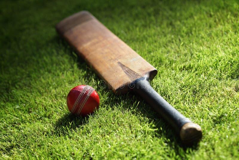 板球拍和球 免版税库存图片