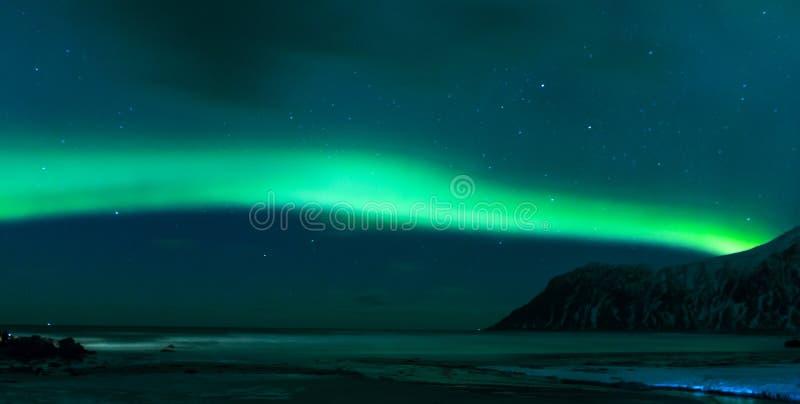 极光叫作酷寒北风光的Borealis使用与在Lofoten海岛的生动的颜色在挪威 免版税图库摄影