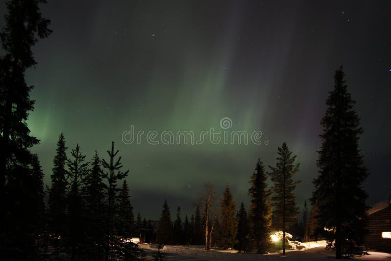极光Borealis在芬兰拉普兰 免版税库存照片