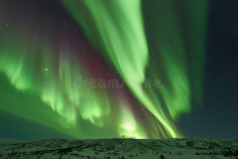 极光Borealis/北极光 库存图片