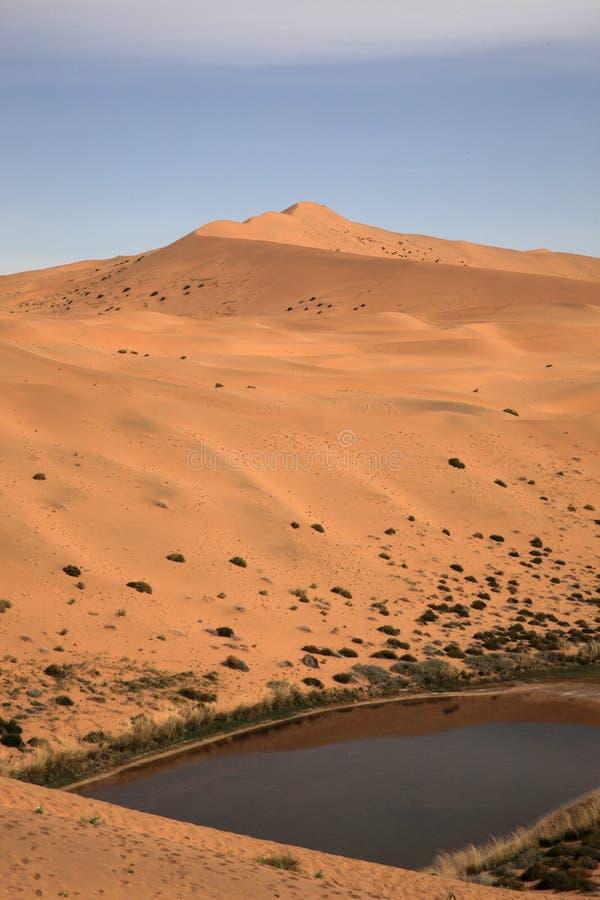 极大的沙丘 库存照片
