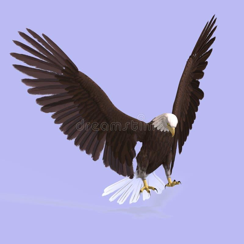 极大的老鹰 皇族释放例证