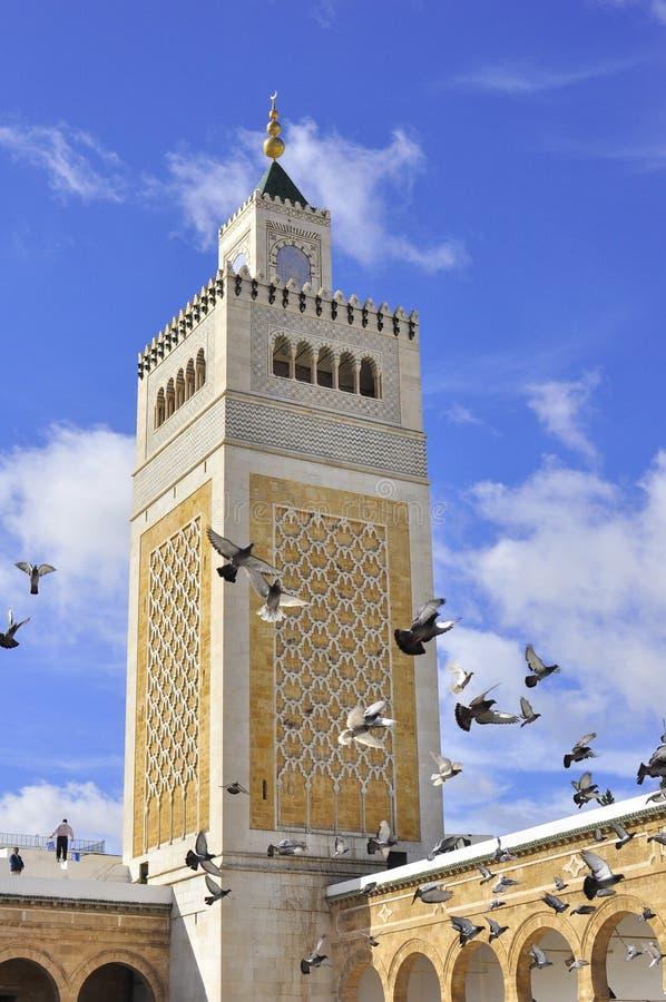 极大的medina尖塔清真寺突尼斯 库存照片