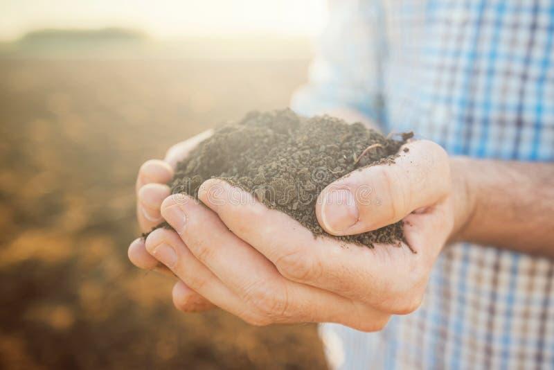 极少数土壤,关闭农夫的手 图库摄影