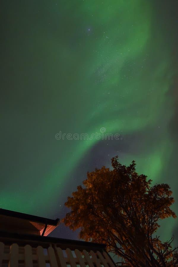极性北极北极光极光borealis天空星在斯堪的那维亚农厂冬天雪山的挪威特罗姆瑟 库存照片