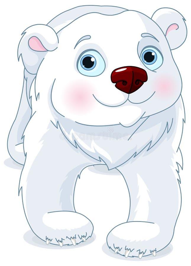 极性熊的看起来 向量例证